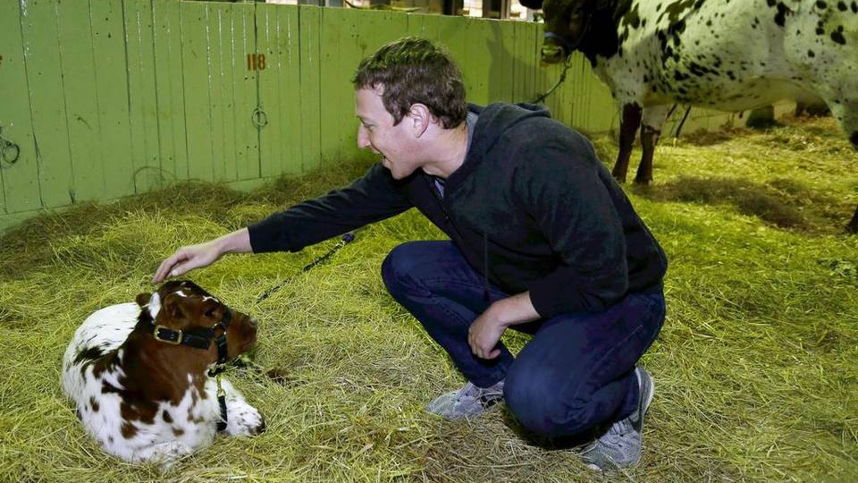 Facebook CEO Mark Zuckerberg stops by the Fort Worth Stock Show