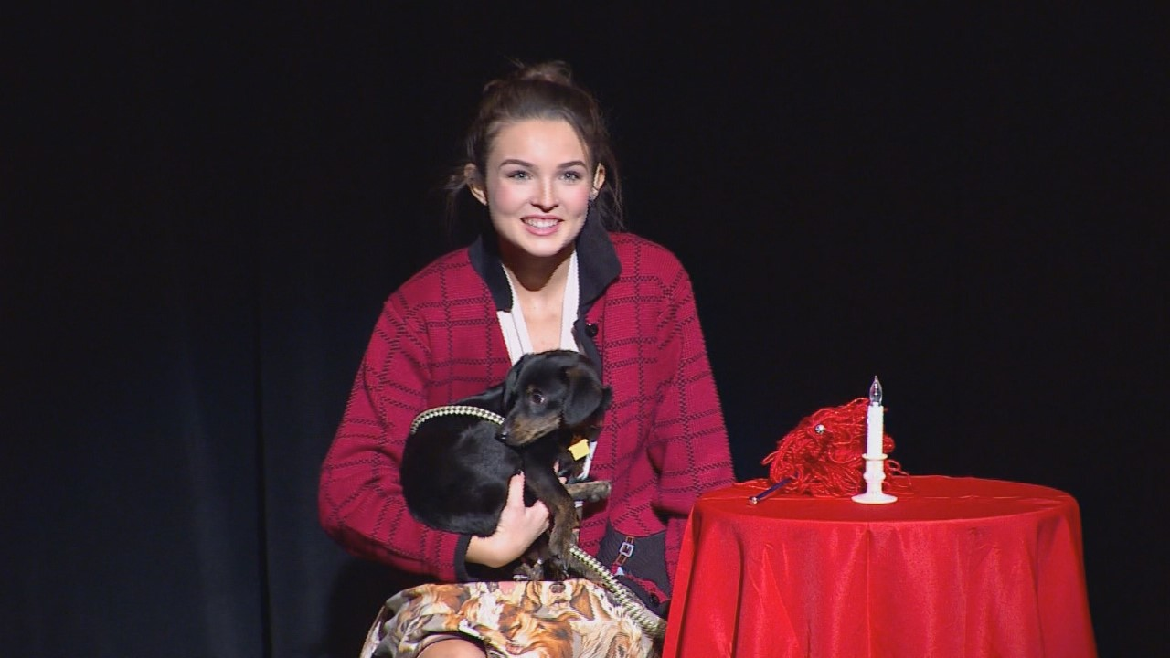Street dogs put in the spotlight at Dallas school play