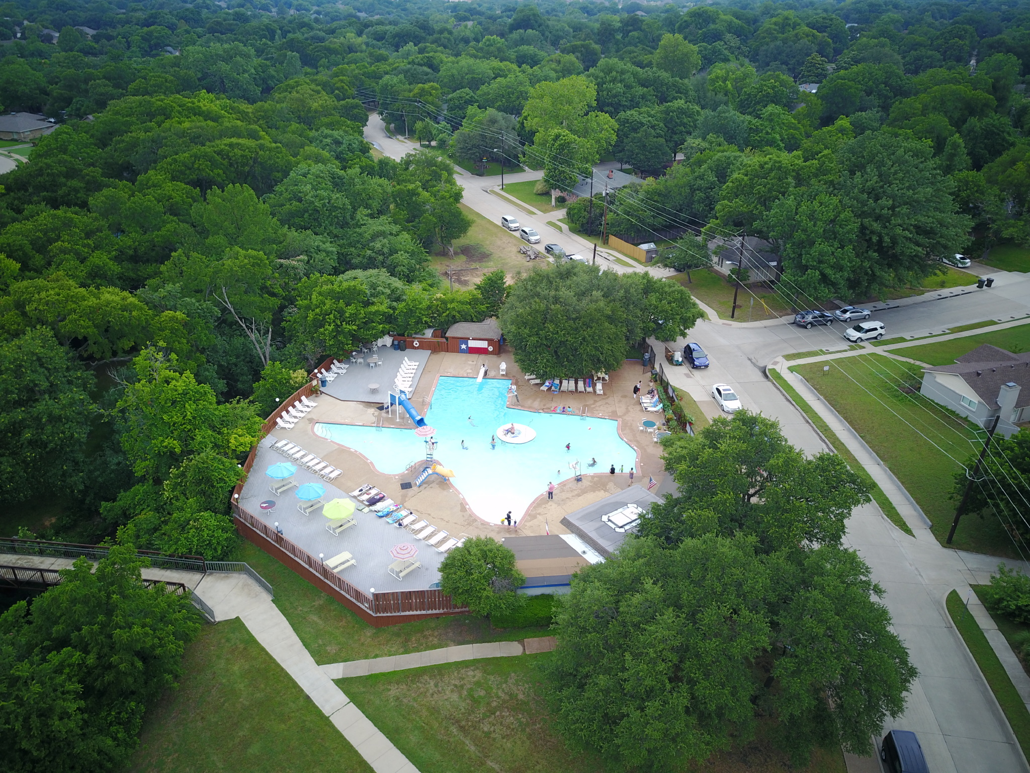 Did You Know Texas Shaped Pool In Plano